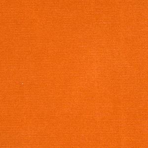 Elan Velvet Apricot
