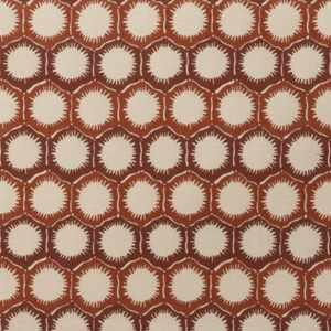 Molokai Nectarine