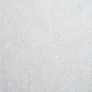 14078W Travara Misty 06